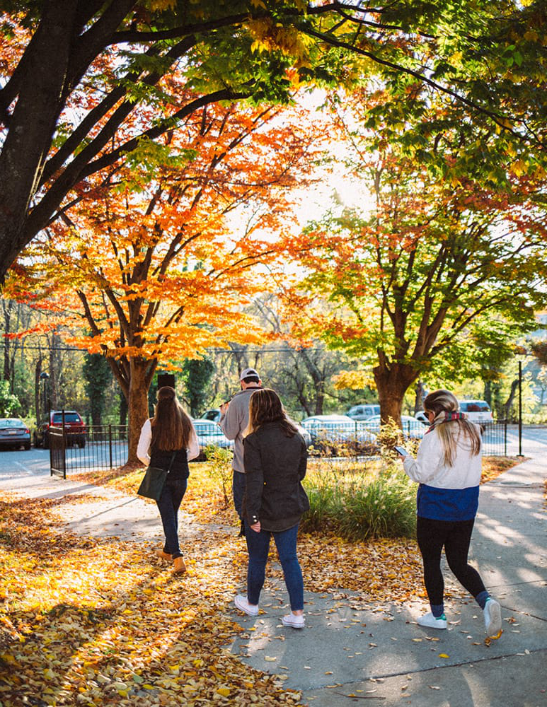 Students walking on a path with fall foliage all around