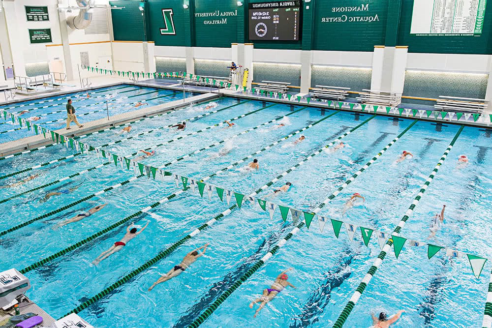 Many students practicing swimming in lanes in a large pool