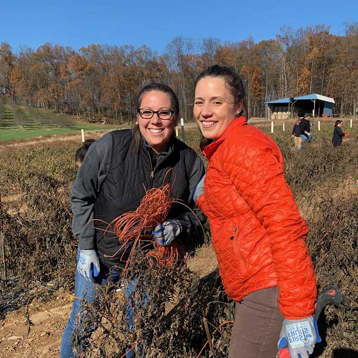 Loyola employees helping out on a farm